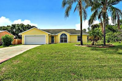 Port Saint Lucie Single Family Home For Sale: 687 SW Nichols Terrace