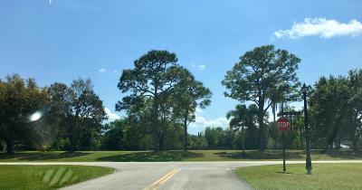 Palm Beach Gardens Residential Lots & Land For Sale: 5222 Desert Vixen Road