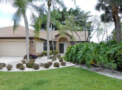 boynton beach Single Family Home For Sale: 7182 Le Chalet Boulevard
