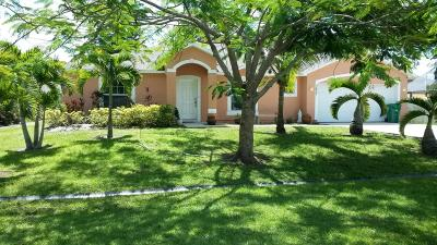 Port Saint Lucie, Saint Lucie West Single Family Home For Sale: 3437 SW Funtuna Street SW