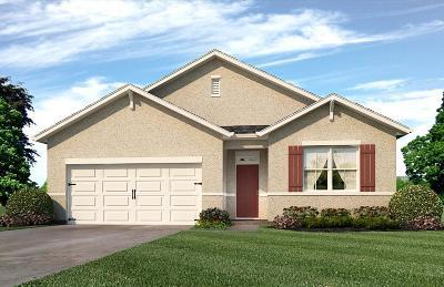 Port Saint Lucie, Saint Lucie West Single Family Home For Sale: 519 SW Aster Road