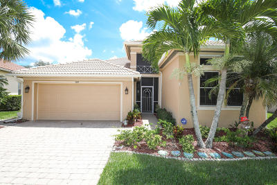 Port Saint Lucie, Saint Lucie West Single Family Home For Sale: 309 NW Somerset Circle