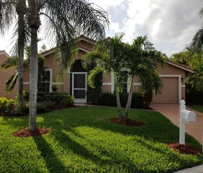Greenacres Single Family Home For Sale: 169 Caribe Court