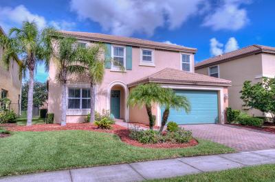Port Saint Lucie, Saint Lucie West Single Family Home For Sale: 11245 SW Kingslake Circle
