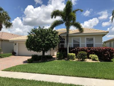 Boynton Beach Single Family Home For Sale: 8839 Bellido Circle