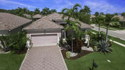 Boynton Beach Single Family Home For Sale: 8807 Downing Street