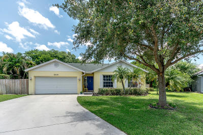 Boynton Beach Single Family Home For Sale: 9879 Goldenrod Drive