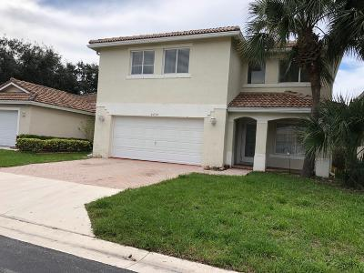 Lake Worth, Lakeworth Single Family Home For Sale: 6434 Willoughby Circle