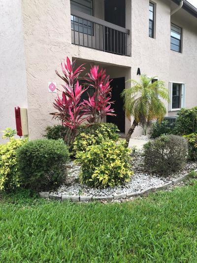 Boca Raton Condo For Sale: 21546 Cypress Hammock Drive #40a