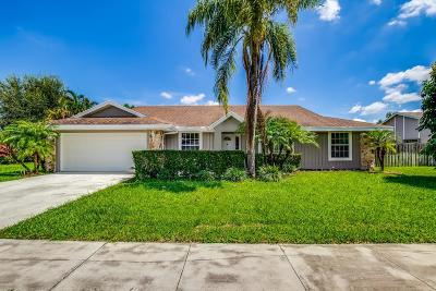 Wellington Single Family Home For Sale: 11733 Turnstone Drive