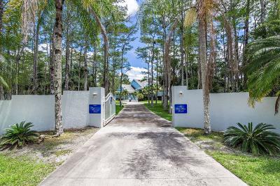 Palm Beach Gardens Single Family Home For Sale: 13100 Pine Borough Lane
