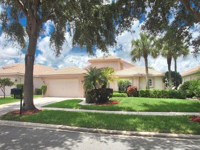 Delray Beach Single Family Home Contingent: 13221 Alhambra Lake Circle