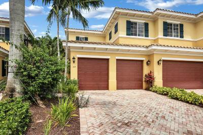 Palm Beach Gardens Condo For Sale: 329 Chambord Terrace