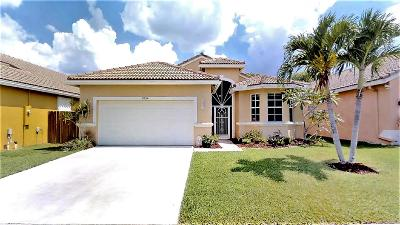 Boynton Beach Single Family Home For Sale: 9554 Verona Lakes Boulevard