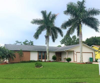 Port Saint Lucie Single Family Home For Sale: 180 NE Royce Avenue