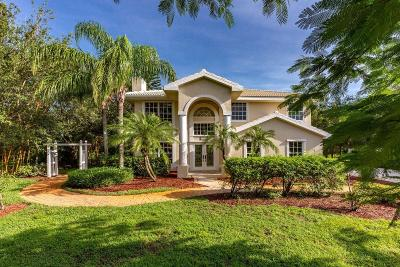 Palm City Single Family Home For Sale: 1523 SW Sea Holly Way