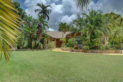 Jensen Beach Single Family Home For Sale: 346 NE Ficus Terrace
