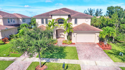 Royal Palm Beach Single Family Home Contingent: 591 Glenfield Way