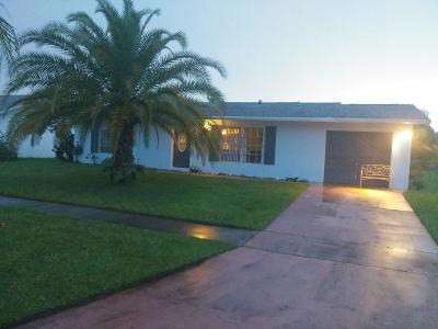 Port Saint Lucie Single Family Home For Sale: 273 SW Reynolds Avenue