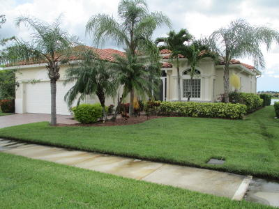 Port Saint Lucie Single Family Home For Sale: 11479 SW Apple Blossom Trail E