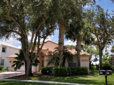 Boca Raton Single Family Home For Sale: 8748 Via Ancho Road