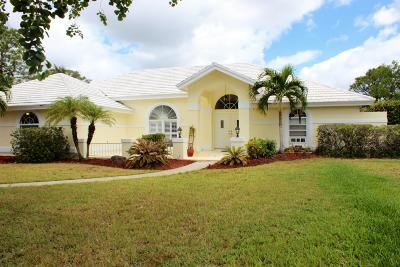 Palm City Single Family Home For Sale: 4131 SW Bimini Circle