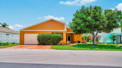Boynton Beach Single Family Home For Sale: 42 Hastings Lane