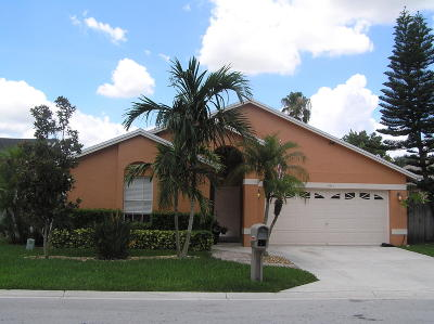 Wellington Single Family Home Contingent: 1411 Waterway Cove Drive