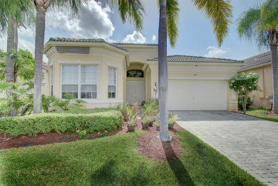Delray Beach Single Family Home Contingent: 7167 Demedici Circle