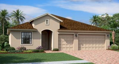 Vero Beach Single Family Home For Sale: 10126 W Verona Circle