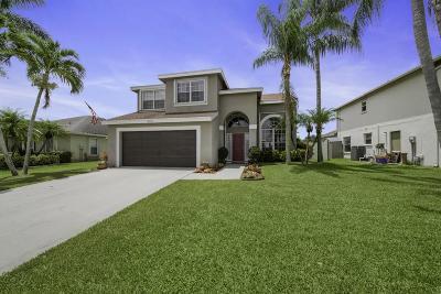 Boynton Beach Single Family Home Contingent: 6170 Terra Rosa Circle
