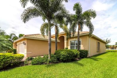 Boynton Beach Single Family Home For Sale: 12345 Mount Bora Drive