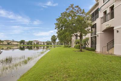 Palm Beach Gardens Condo For Sale: 2728 Anzio Court #203