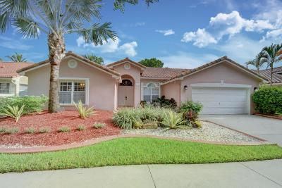Weston Single Family Home For Sale: 1975 Water Ridge Drive