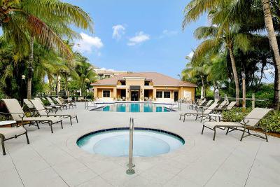 Palm Beach Gardens Rental For Rent: 4903 Midtown Lane #3411