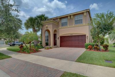 Port Saint Lucie Single Family Home For Sale: 11134 SW Springtree Terrace