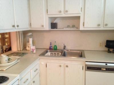 Lake Worth Condo For Sale: 4838 Esedra Court #204