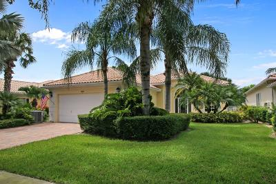 Palm Beach Gardens Single Family Home For Sale: 825 Niemen Drive