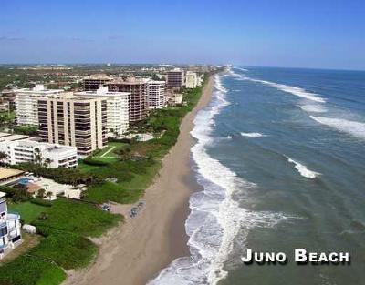 Juno Beach Rental For Rent: 600 Ocean Drive #12-B