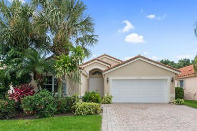Boynton Beach Single Family Home For Sale: 11736 Dove Hollow Avenue