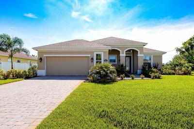 Port Saint Lucie Single Family Home For Sale: 6599 NW Omega Road