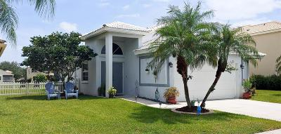 Delray Beach Single Family Home For Sale: 4075 S Sea Grape Circle