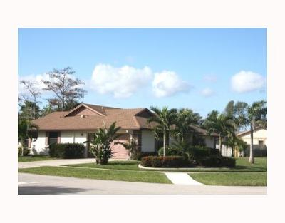 Wellington Single Family Home For Sale: 11186 Pine Valley Drive