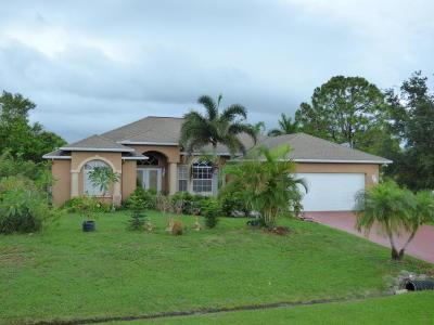 Port Saint Lucie Single Family Home For Sale: 372 SW Kestor Drive S