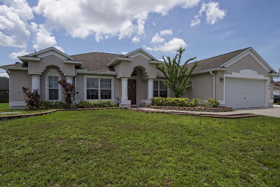 Port Saint Lucie Single Family Home For Sale: 384 SW Millard Drive