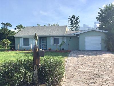 Port Saint Lucie Single Family Home For Sale: 1952 SE Burgundy Lane