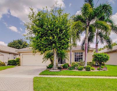 Boynton Beach Single Family Home For Sale: 8210 Duomo Circle