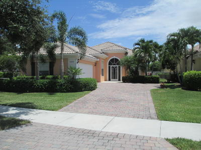 Port Saint Lucie Single Family Home For Sale: 10931 SW Fall Creek Drive