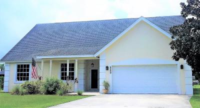 Holiday Pines Single Family Home For Sale: 5300 Suson Lane