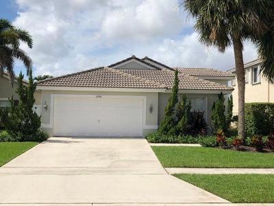 Lake Worth Single Family Home For Sale: 5038 Prairie Dunes Village Circle